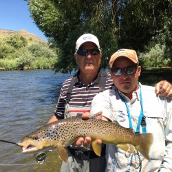 provo river fly fishing