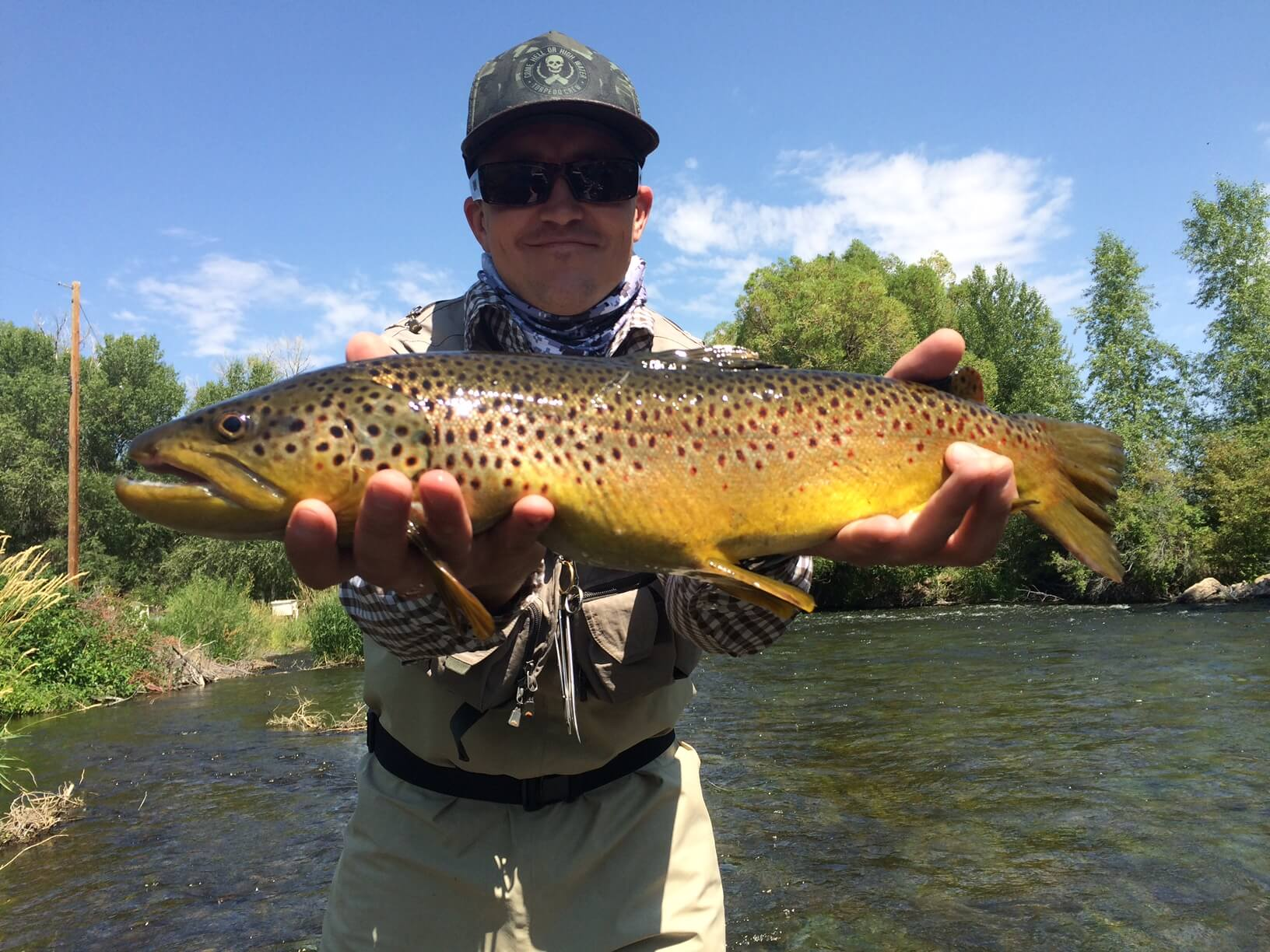 weber river park city fly fishing company