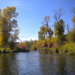 Fly Fishing Middle Provo