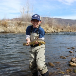 Middle Provo Fly Fishing