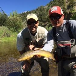 Utah fly fishing small streams